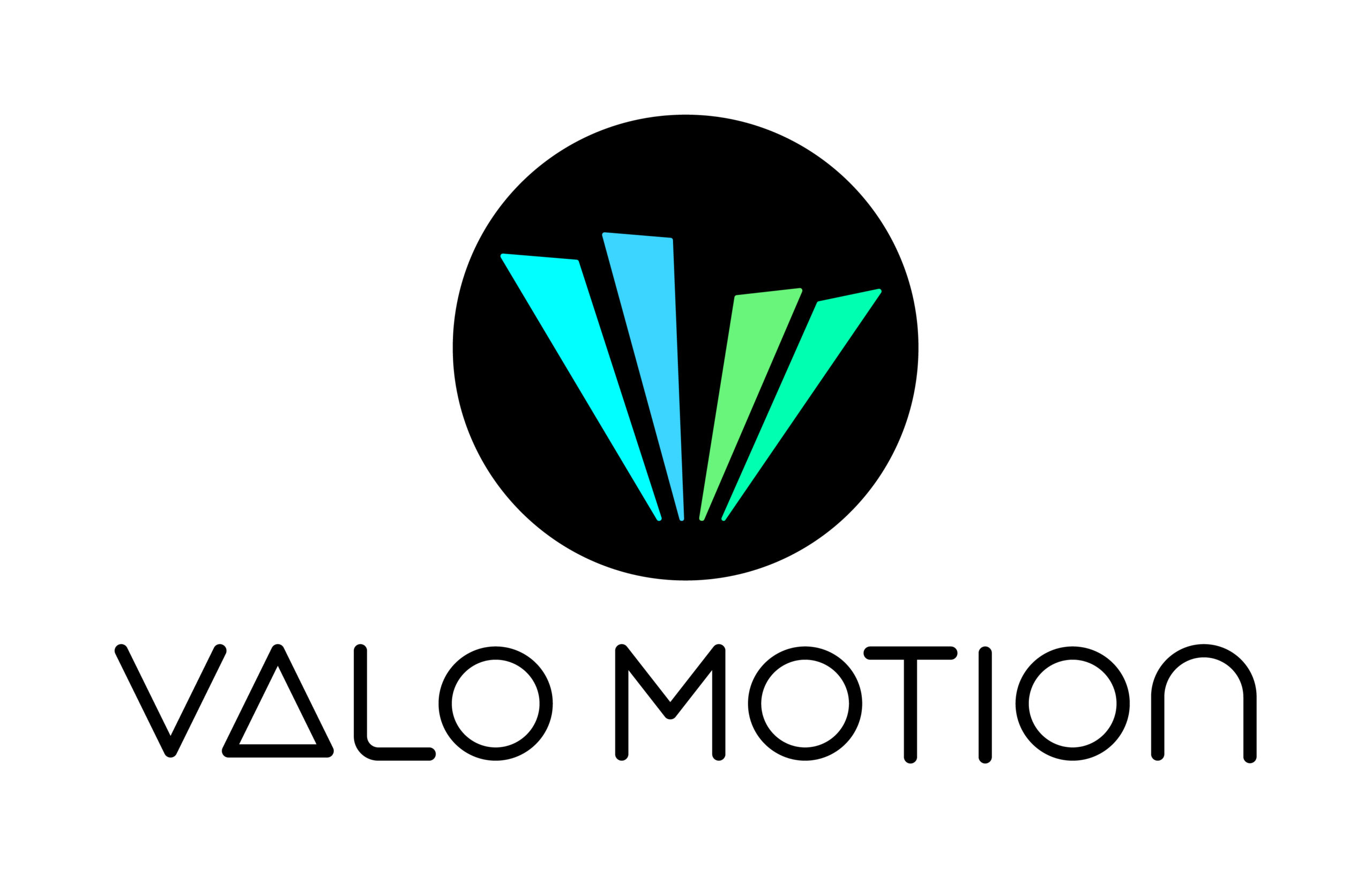 Technical Producer / Project Manager VALO MOTION / Espoo